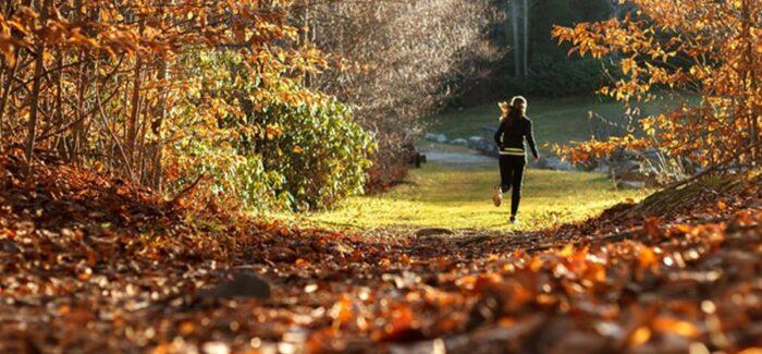 Im Herbst schön fit bleiben: So geht's!